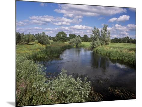 River Suir, Not Far from Cashel, County Tipperary, Munster, Republic of Ireland, Europe-Patrick Dieudonne-Mounted Photographic Print