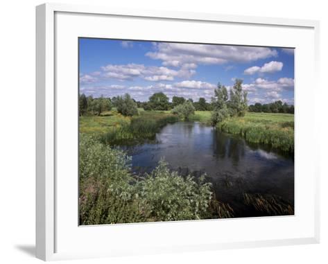 River Suir, Not Far from Cashel, County Tipperary, Munster, Republic of Ireland, Europe-Patrick Dieudonne-Framed Art Print