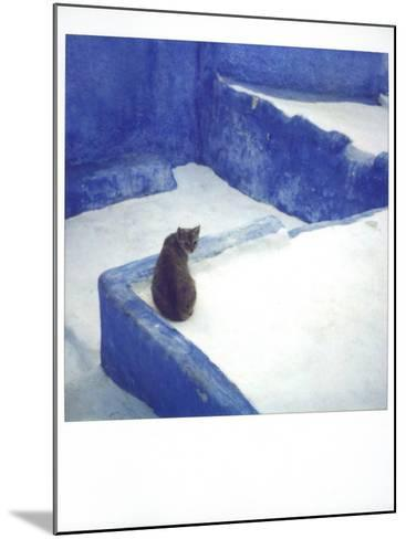 Polaroid of a Cat Sitting on Whitewashed Path, Chefchaouen, Morocco, North Africa, Africa-Lee Frost-Mounted Photographic Print