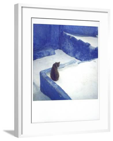 Polaroid of a Cat Sitting on Whitewashed Path, Chefchaouen, Morocco, North Africa, Africa-Lee Frost-Framed Art Print