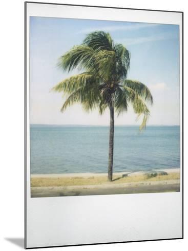 Polaroid of Single Palm Tree with Caribbean Sea in Background, Cienfuegos, Cuba, West Indies-Lee Frost-Mounted Photographic Print