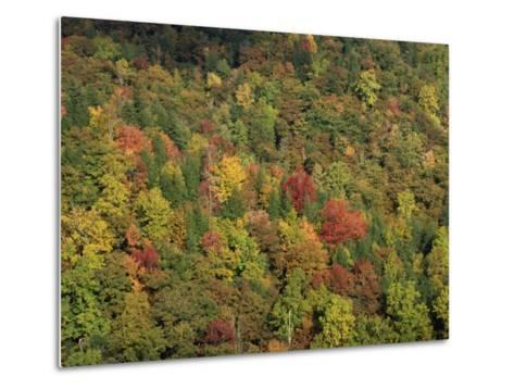 Aerial View over Autumnal Forest Canopy, Near Green Knob, Blue Ridge Parkway, North Carolina, USA-James Green-Metal Print