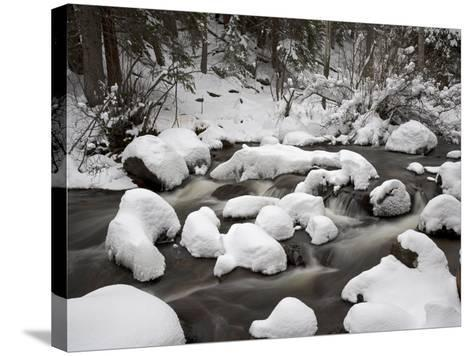 Snow-Covered Boulders and Flowing Creek, Glacier Creek, Rocky Mountain National Park, Colorado, USA-James Hager-Stretched Canvas Print