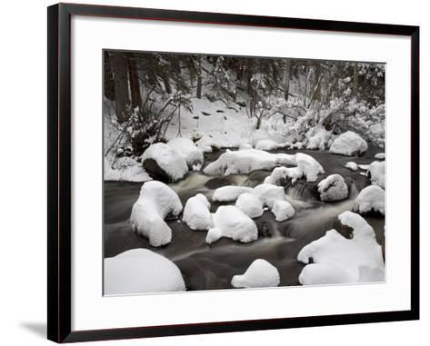 Snow-Covered Boulders and Flowing Creek, Glacier Creek, Rocky Mountain National Park, Colorado, USA-James Hager-Framed Art Print
