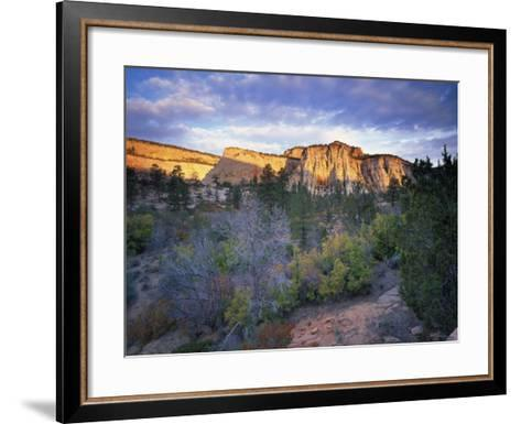 First Light on the Hills, Zion National Park, Utah, United States of America, North America-Lee Frost-Framed Art Print