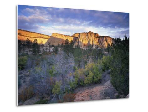 First Light on the Hills, Zion National Park, Utah, United States of America, North America-Lee Frost-Metal Print