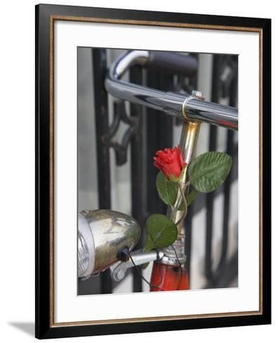 Close Up of a Bicycle with a Rose for Decoration, Amsterdam, Netherlands, Europe-Amanda Hall-Framed Art Print