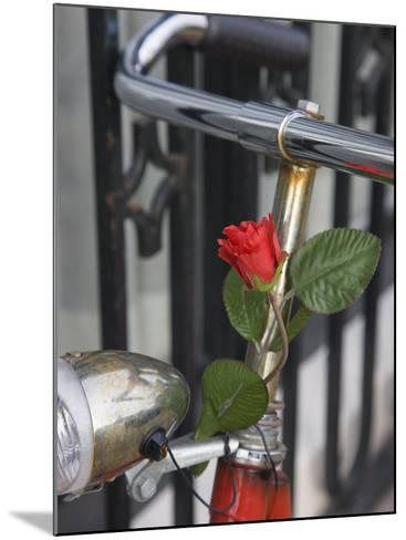 Close Up of a Bicycle with a Rose for Decoration, Amsterdam, Netherlands, Europe-Amanda Hall-Mounted Photographic Print