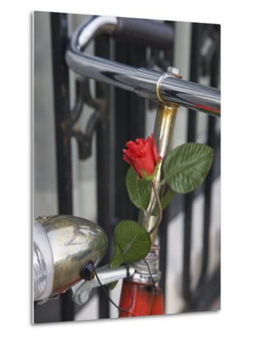 Close Up of a Bicycle with a Rose for Decoration, Amsterdam, Netherlands, Europe-Amanda Hall-Metal Print