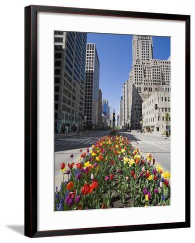 Tulips on North Michigan Avenue, the Magnificent Mile, Chicago, Illinois, USA-Amanda Hall-Framed Art Print
