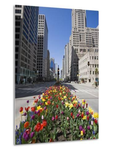 Tulips on North Michigan Avenue, the Magnificent Mile, Chicago, Illinois, USA-Amanda Hall-Metal Print