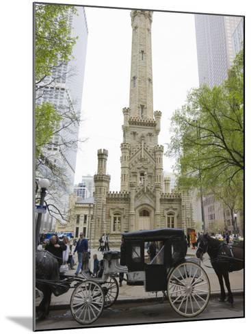 Historic Water Tower, North Michigan Avenue, Chicago, Illinois, USA-Amanda Hall-Mounted Photographic Print