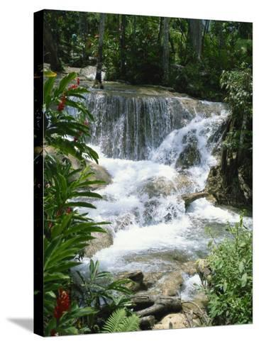 Dunns River Falls, Ocho Rios, Jamaica, West Indies, Caribbean, Central America-Harding Robert-Stretched Canvas Print