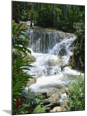 Dunns River Falls, Ocho Rios, Jamaica, West Indies, Caribbean, Central America-Harding Robert-Mounted Photographic Print