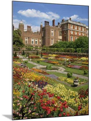 Pond Garden in the Palace Gardens, Hampton Court, London, England, United Kingdom, Europe-Harding Robert-Mounted Photographic Print