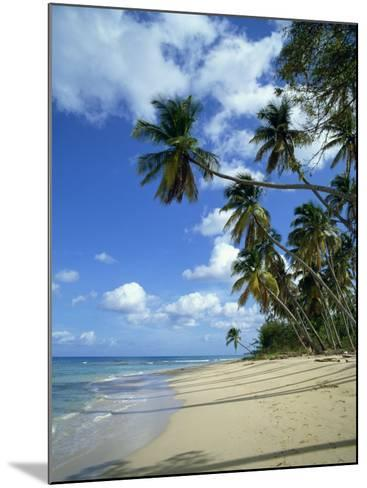 Barbados, West Indies, Caribbean, Central America-Harding Robert-Mounted Photographic Print