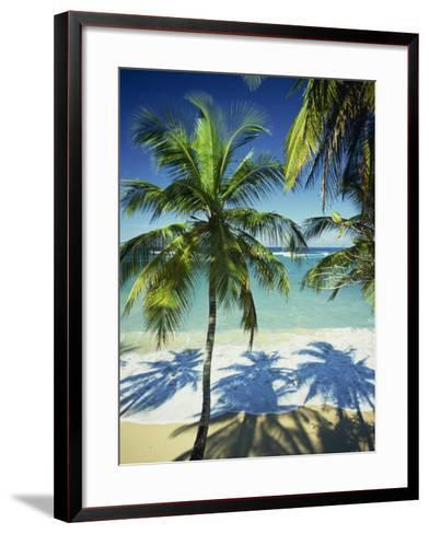 Palm Trees on Tropical Beach, Dominican Republic, West Indies, Caribbean, Central America-Harding Robert-Framed Art Print