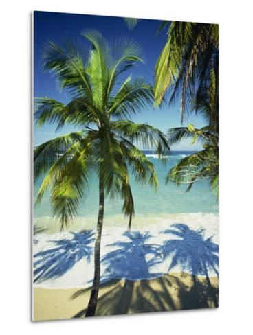 Palm Trees on Tropical Beach, Dominican Republic, West Indies, Caribbean, Central America-Harding Robert-Metal Print