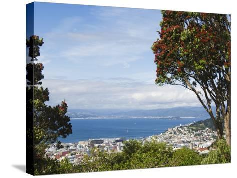 Oriental Bay and Wellington Harbour, Wellington, North Island, New Zealand, Pacific-Kober Christian-Stretched Canvas Print