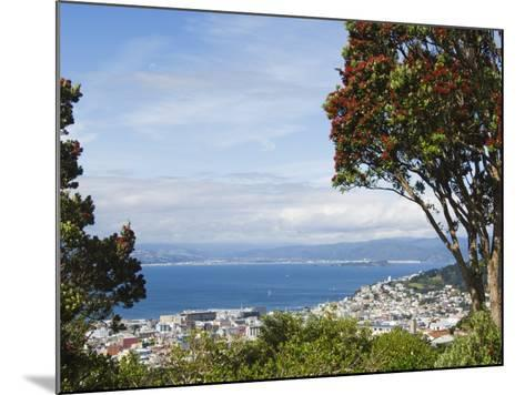 Oriental Bay and Wellington Harbour, Wellington, North Island, New Zealand, Pacific-Kober Christian-Mounted Photographic Print