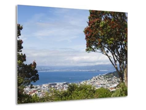Oriental Bay and Wellington Harbour, Wellington, North Island, New Zealand, Pacific-Kober Christian-Metal Print