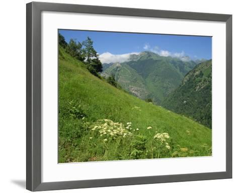 Vallee D'Aspe, Bearn, Pyrenees Atlantique, Aquitaine, France, Europe-David Hughes-Framed Art Print