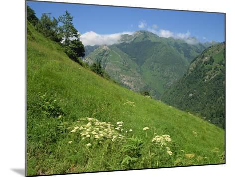 Vallee D'Aspe, Bearn, Pyrenees Atlantique, Aquitaine, France, Europe-David Hughes-Mounted Photographic Print