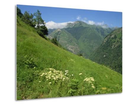 Vallee D'Aspe, Bearn, Pyrenees Atlantique, Aquitaine, France, Europe-David Hughes-Metal Print