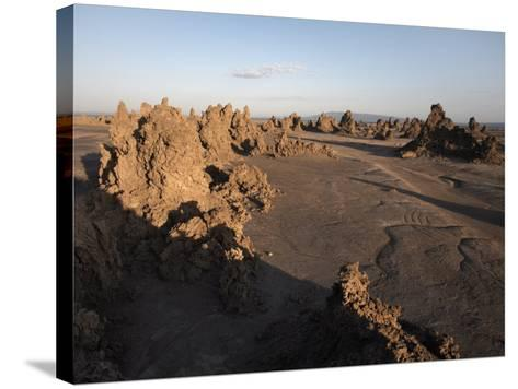 Desolate Landscape of Lac Abbe, Dotted with Limestone Chimneys, Djibouti, Africa-Mcconnell Andrew-Stretched Canvas Print