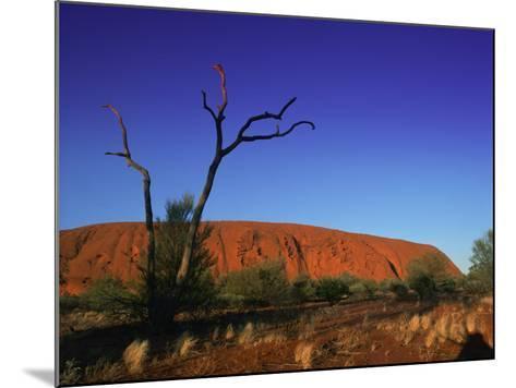 Ayers Rock at Sunrise, Uluru-Kata Tjuta National Park, Northern Territory, Australia, Pacific-Mawson Mark-Mounted Photographic Print