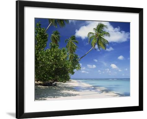 Palm Tree on a Tropical Beach on the Island of Tobago, West Indies, Caribbean, Central America-Miller John-Framed Art Print