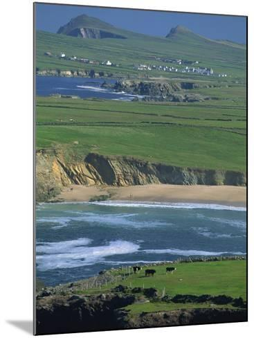 Aerial View over the Dingle Peninsula, County Kerry, Munster, Republic of Ireland, Europe-Maxwell Duncan-Mounted Photographic Print