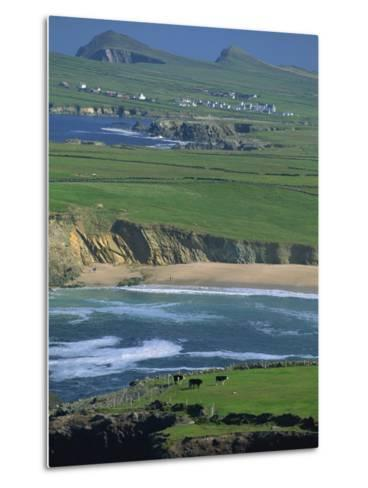 Aerial View over the Dingle Peninsula, County Kerry, Munster, Republic of Ireland, Europe-Maxwell Duncan-Metal Print