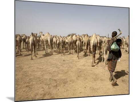 Nomadic Camel Herders Lead their Herd to a Watering Hole in Rural Somaliland, Northern Somalia-Mcconnell Andrew-Mounted Photographic Print