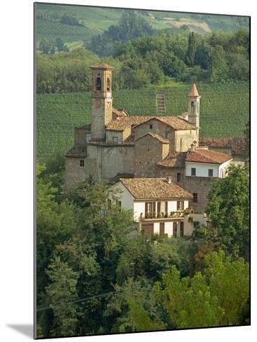 Tenuta La Volta, an Old Fortified Wine Cantina, Near Barolo, Piedmont, Italy, Europe-Newton Michael-Mounted Photographic Print