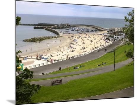 Cobb and Beach at Lyme Regis, Dorset, England, United Kingdom, Europe-Rainford Roy-Mounted Photographic Print