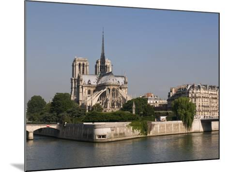 River Seine and Notre Dame Cathedral, Paris, France, Europe-Pitamitz Sergio-Mounted Photographic Print