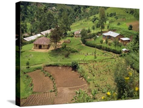 Aerial View of Children Leaving School and Terraced Fields, Kabale, Uganda, Africa-Poole David-Stretched Canvas Print