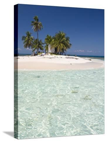 Palm Trees on Beach, Silk Caye, Belize, Central America-Jane Sweeney-Stretched Canvas Print