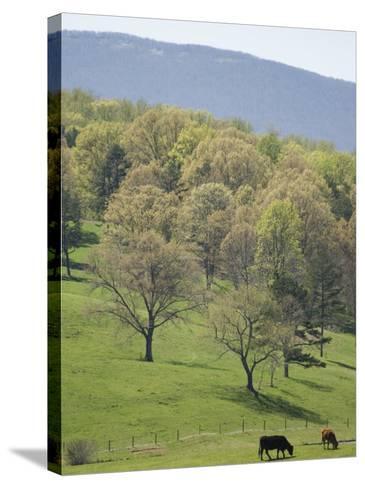 Blue Ridge Farm, Virginia Historic Landmark, Virginia, United States of America, North America-Snell Michael-Stretched Canvas Print