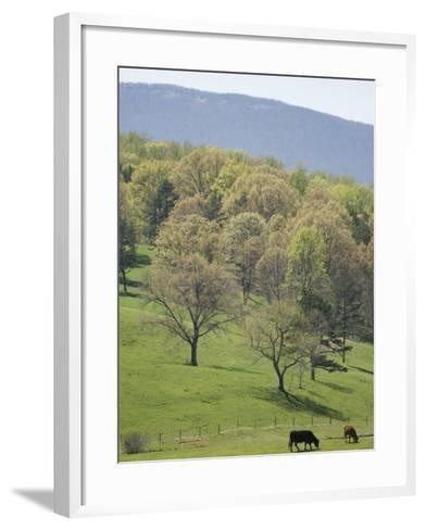 Blue Ridge Farm, Virginia Historic Landmark, Virginia, United States of America, North America-Snell Michael-Framed Art Print