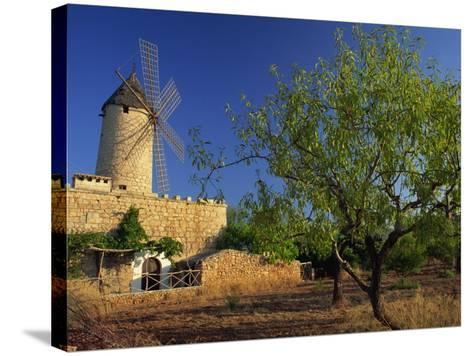 Typical Agricultural Windmill, Mallorca, Balearic Islands, Spain, Europe-Tomlinson Ruth-Stretched Canvas Print