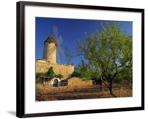 Typical Agricultural Windmill, Mallorca, Balearic Islands, Spain, Europe-Tomlinson Ruth-Framed Art Print