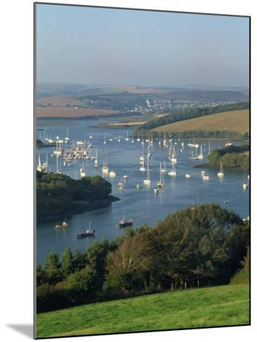View over the Kingsbridge Estuary from East Portlemouth, Salcombe, Devon, England, United Kingdom-Tomlinson Ruth-Mounted Photographic Print