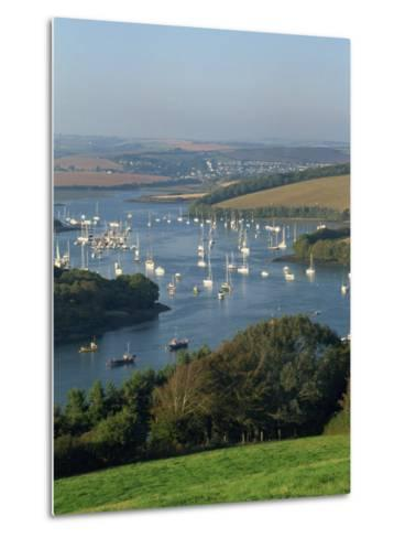 View over the Kingsbridge Estuary from East Portlemouth, Salcombe, Devon, England, United Kingdom-Tomlinson Ruth-Metal Print