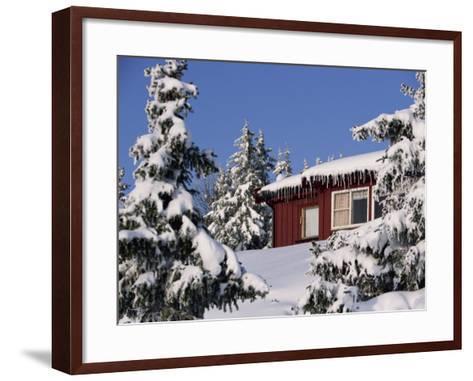 Snow Covered Trees and House, with Icicles, Near Sjusjoen, Lillehammer Area, Norway, Scandinavia-Woolfitt Adam-Framed Art Print