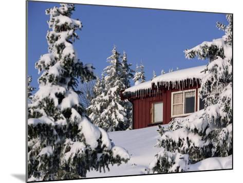 Snow Covered Trees and House, with Icicles, Near Sjusjoen, Lillehammer Area, Norway, Scandinavia-Woolfitt Adam-Mounted Photographic Print