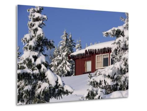 Snow Covered Trees and House, with Icicles, Near Sjusjoen, Lillehammer Area, Norway, Scandinavia-Woolfitt Adam-Metal Print