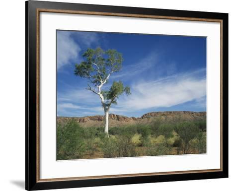 Landscape in the West Macdonnell Ranges Near Alice Springs in the Northern Territory, Australia-Wilson Ken-Framed Art Print