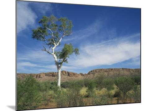 Landscape in the West Macdonnell Ranges Near Alice Springs in the Northern Territory, Australia-Wilson Ken-Mounted Photographic Print